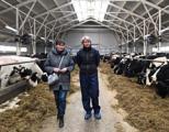 В Глазовском районе открылась новая молочная ферма на 512 коров