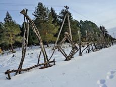 Северные районы Удмуртии объединят в туристический кластер