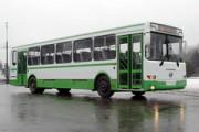В Ижевске начали ходить автобусы с «зеленым ценником»