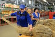 Минсельхоз поддержал идею строительства в Глазове завода по переработке льна