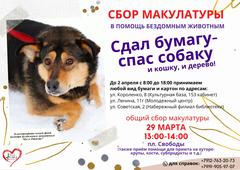 Жители Глазова могут сдать макулатуру и помочь бездомным собакам и кошкам