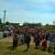 22 июня в Камбарке прошел митинг против строительства комплекса по утилизации опасных отходов