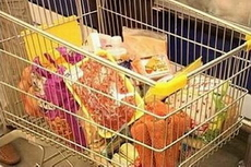 В Удмуртии самый низкий темп роста цен на продукты среди регионов ПФО