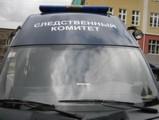 Следственный комитет проводит проверку по факту смерти Децела в Ижевске