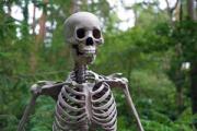 Человеческие останки обнаружили при проведении газификации одного из районов Сарапула