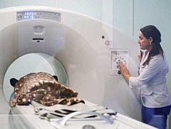 Центр ядерной медицины откроют в Удмуртии в июне