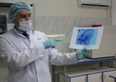 Сотрудники полиции при помощи ДНК-экспертизы раскрыли серию краж