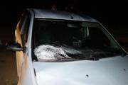 В Глазовском районе пьяный водитель насмерть сбил 2-х детей