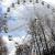 Летный сад в Ижевске 30 сентября закроется на реконструкцию