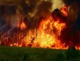 В Забайкалье из-за пожаров был введен режим ЧС