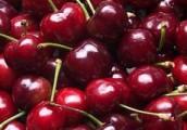 Продавца ягод оштрафовали за уличную торговлю