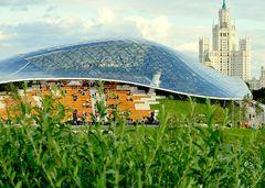 Москвичи за три дня уничтожили около 10 тысяч растений в новом парке «Зарядье»