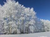 В Удмуртии снова похолодает до -30 градусов